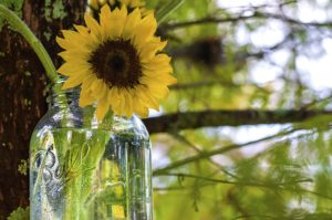 10+ Uses for Mason Jars
