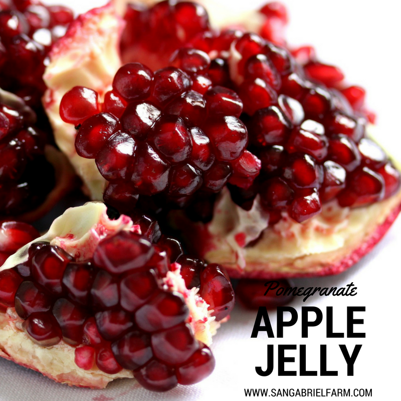 pomegranate apple jelly