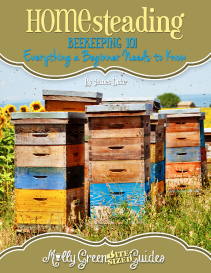 Beekeeping 101: Everything a Beginner Needs to Know E-Book