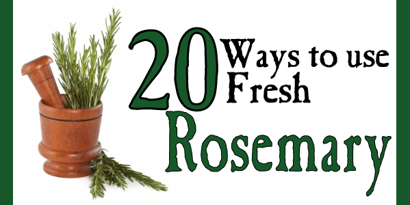 20 ways to use fresh rosemary