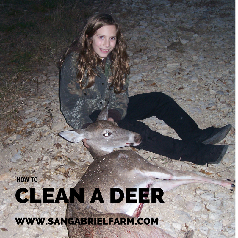how to clean-a-deer