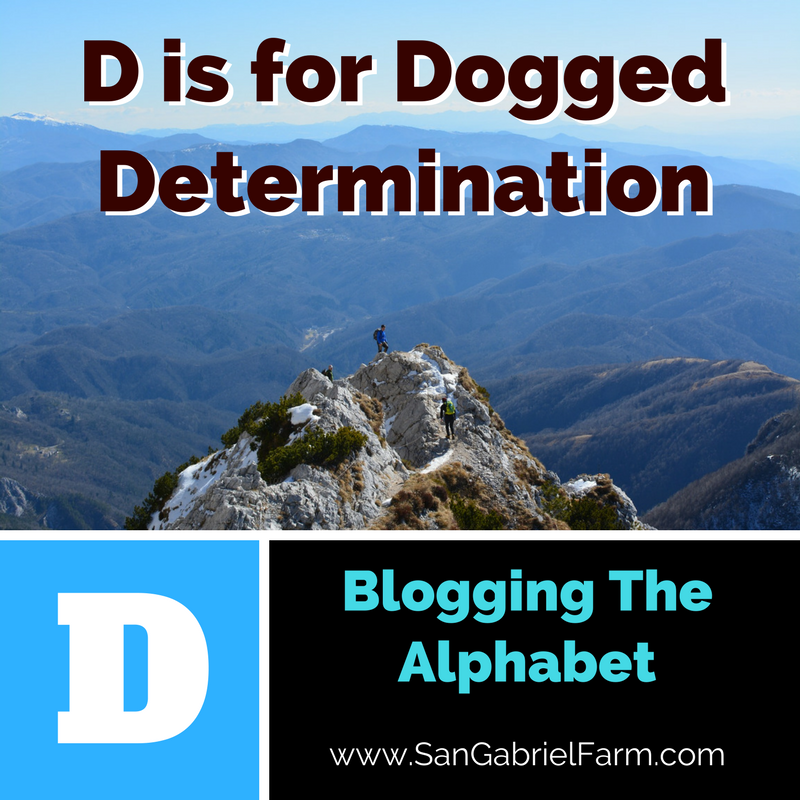 D is for dogged determination