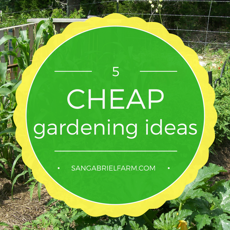 Cheap Gardening Ideas: 5 Cheap Gardening Ideas