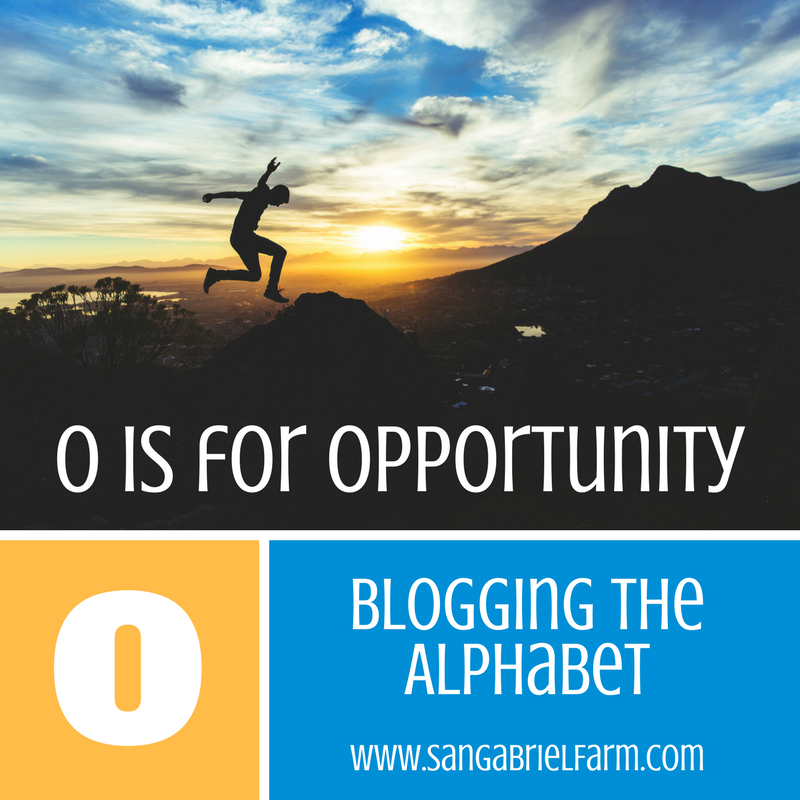 o is for opportunity