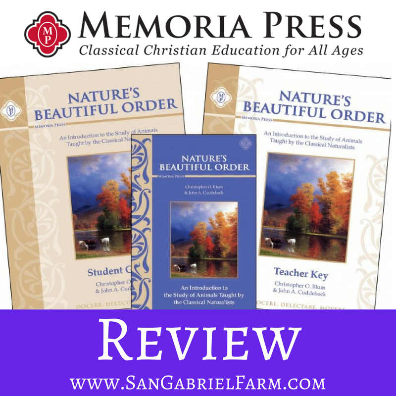 nature's beautiful order review