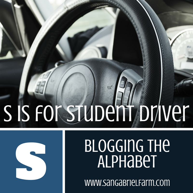 s is for student driver